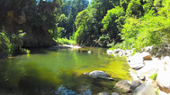 swimming hole at Henry Cowell park